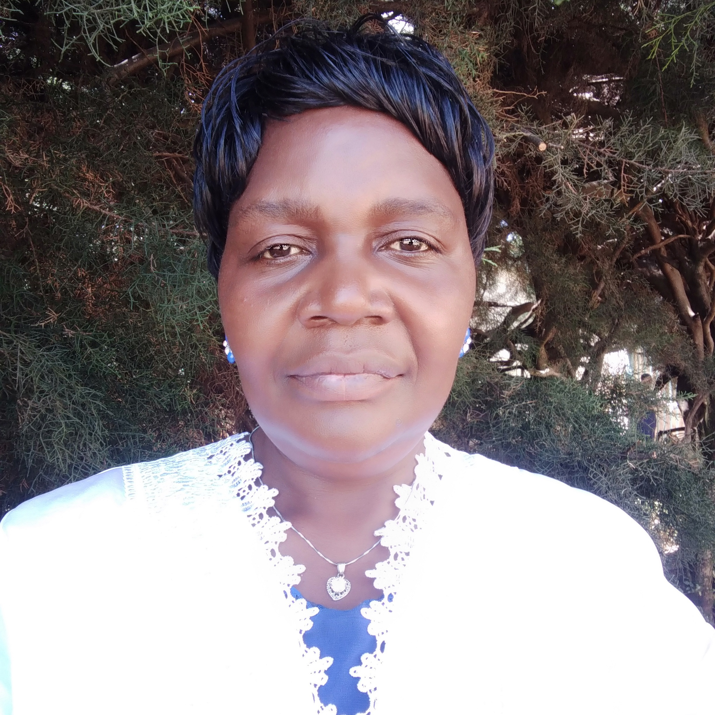 <strong>Prof. Florence N. Indede</strong> - Maseno University
